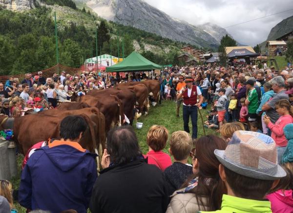 le grand-bornand,fete,alpage,folklore,musique,agriculture