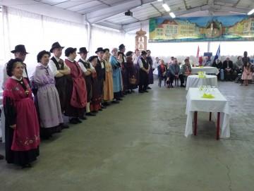 annecy,folklore,danse,savoie,costume