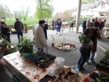 hery-sur-alby,association,plantes,nature,environnement