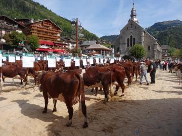 grand-bornand,saint-maurice,foire,agricole,betail,reblochon,bestiaux,haute-savoie,vache