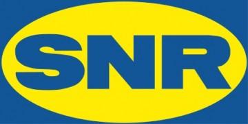 logo SNR.jpg
