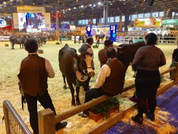paris,salon agriculture,agriculture
