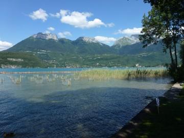 annecy,saint-jorioz,lac,lac d'annecy,roseliere,environnement,loi littoral,littoral