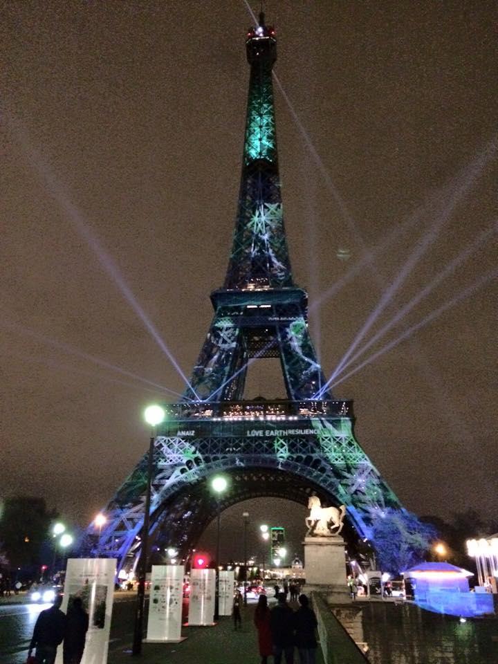 La tour eiffel aux couleurs de la cop21 lionel tardy - Couleur de la tour eiffel ...