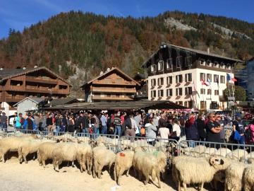 la clusaz,canton,chevres,moutons,animation,foire