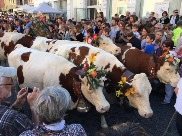 annecy,fete,agriculture,alpage