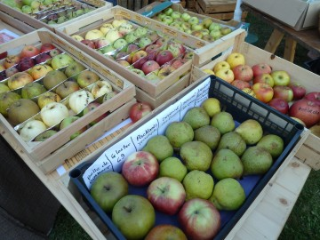 serraval,fete,pomme,anne,cidre