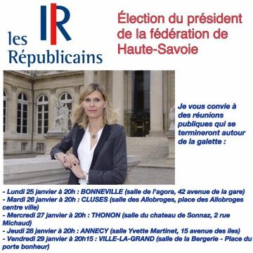 elecetion,ump,les republicains,vote,election,haute-savoie